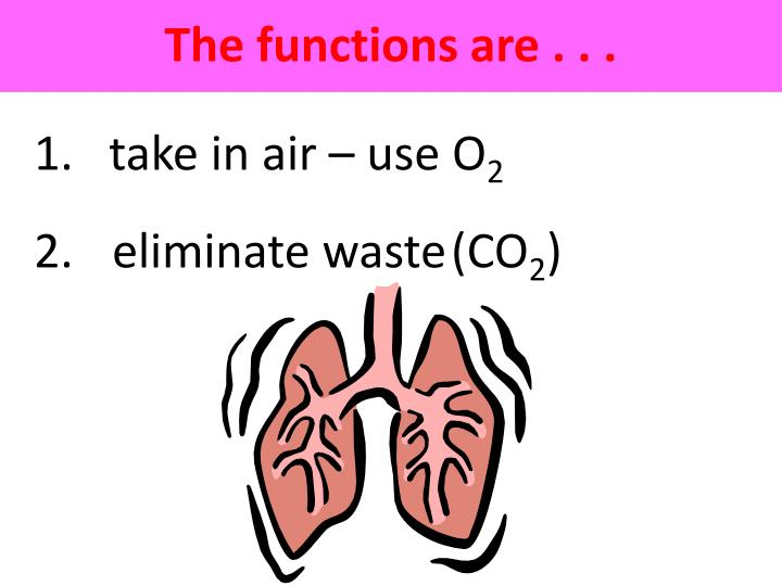 The functions are . . .