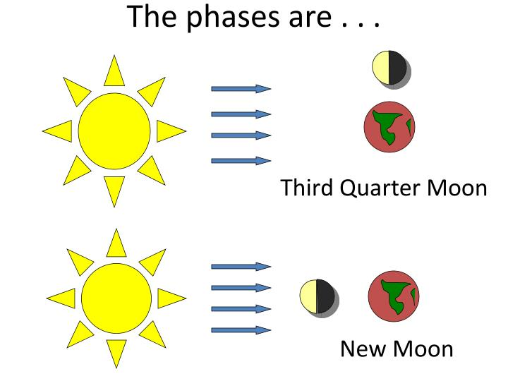 The phases are . . .