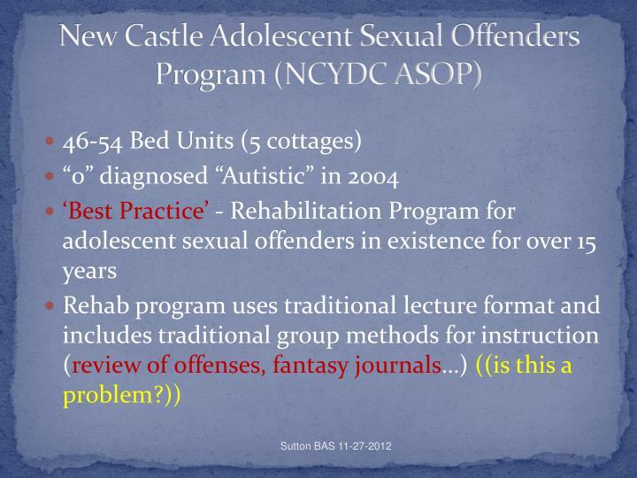 New Castle Adolescent Sexual Offenders Program (NCYDC ASOP)