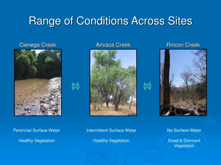 Range of Conditions Across Sites