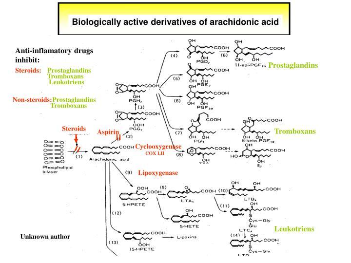 Biologically active derivatives of arachidonic acid