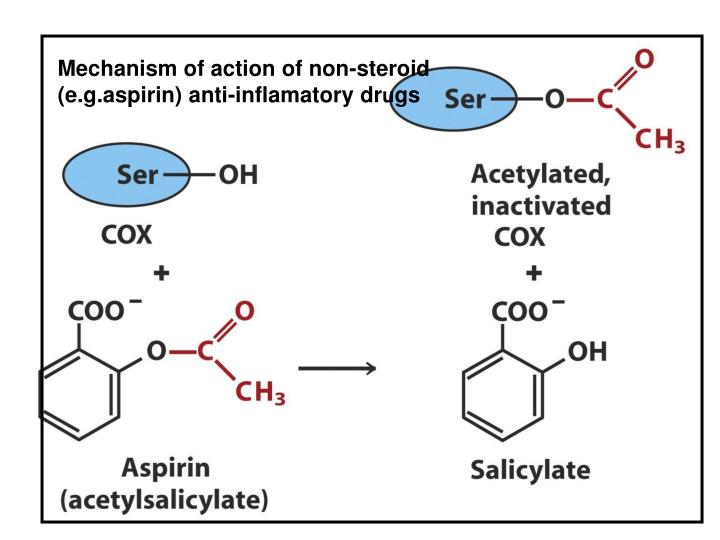 Mechanism of action of non-steroid