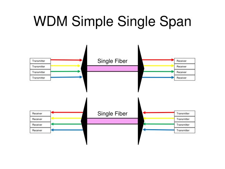 WDM Simple Single Span