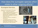 how does the surrogate species effort relate to other ongoing efforts2