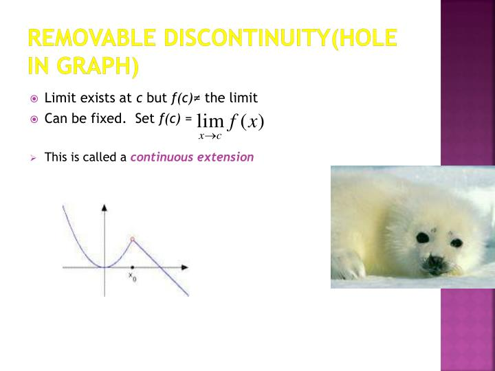 Removable discontinuity(hole