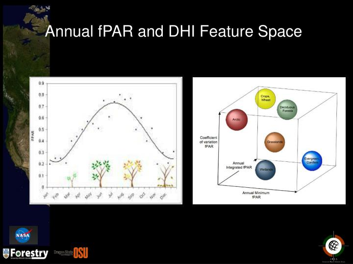 Annual fPAR and DHI Feature Space