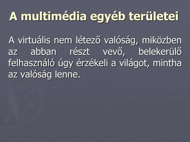 A multimédia egyéb területei