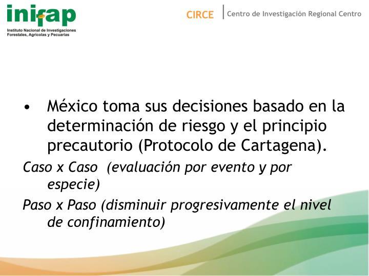 México toma sus decisiones basado en la determinación de riesgo y el principio precautorio (Protocolo de Cartagena).