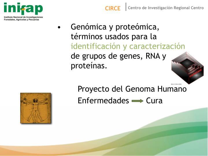 Genómica y proteómica, términos usados para la