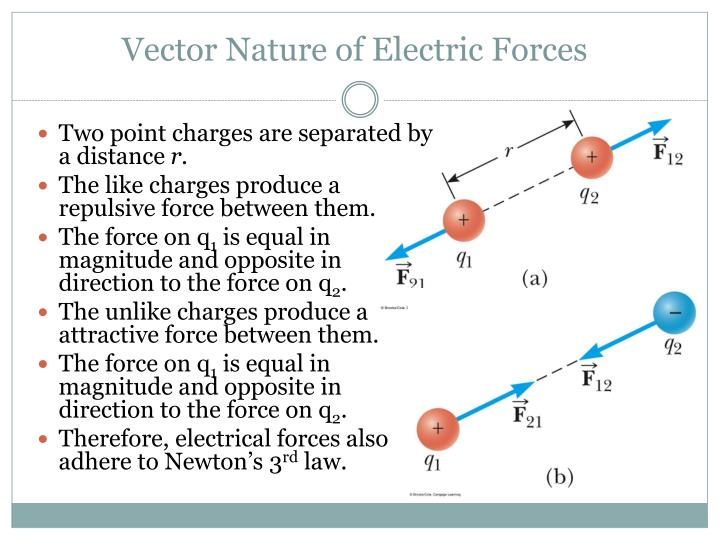 Vector Nature of Electric Forces