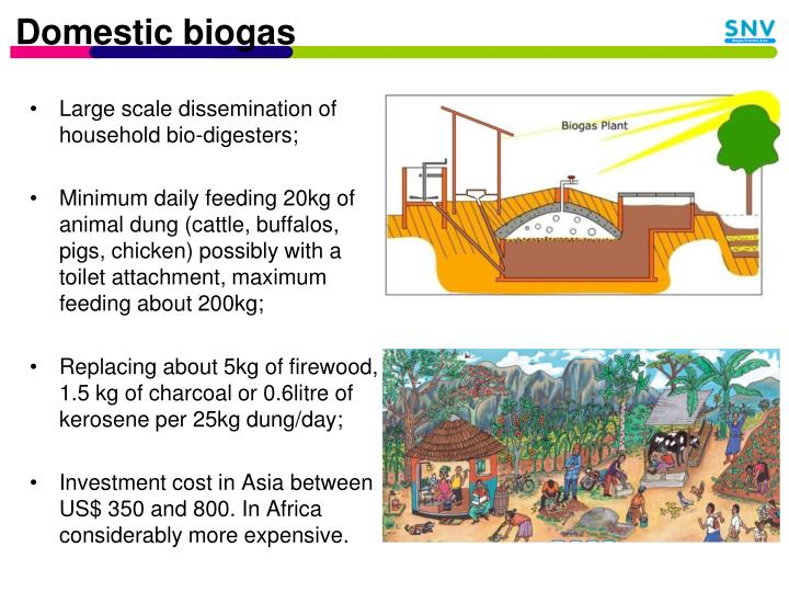 Domestic biogas