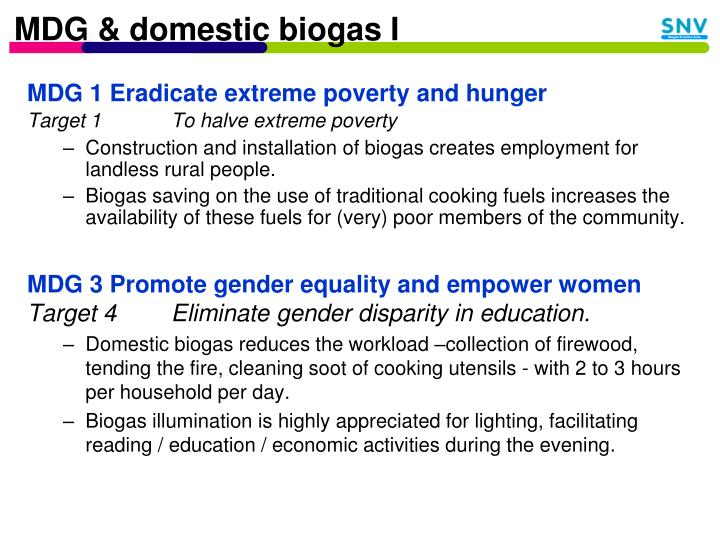 MDG & domestic biogas I