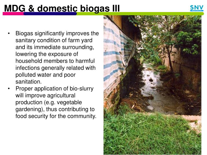 MDG & domestic biogas