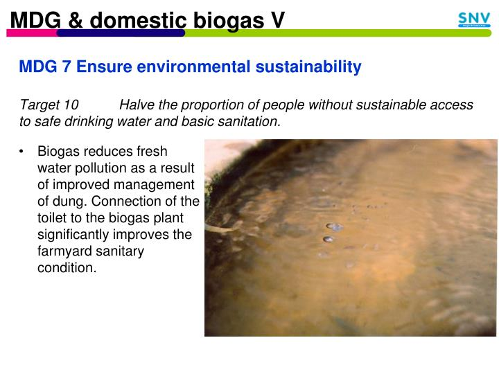 MDG & domestic biogas V