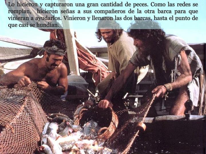 Lo hicieron y capturaron una gran cantidad de peces. Como las redes se rompían,  hicieron señas a sus compañeros de la otra barca para que vinieran a ayudarlos. Vinieron y llenaron las dos barcas, hasta el punto de que casi se hundían.