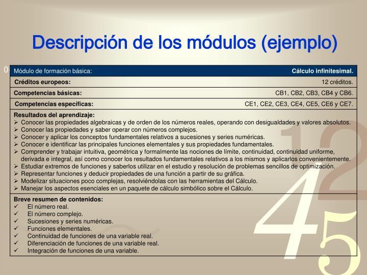 Descripción de los módulos (ejemplo)