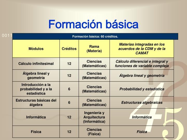 Formación básica