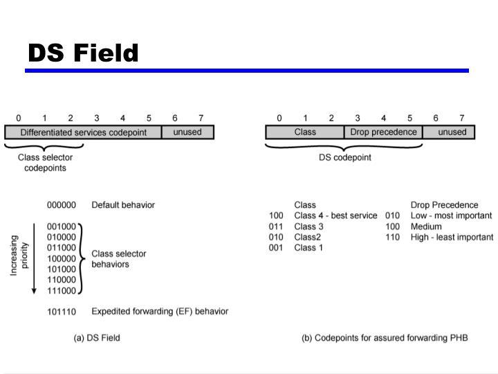 DS Field