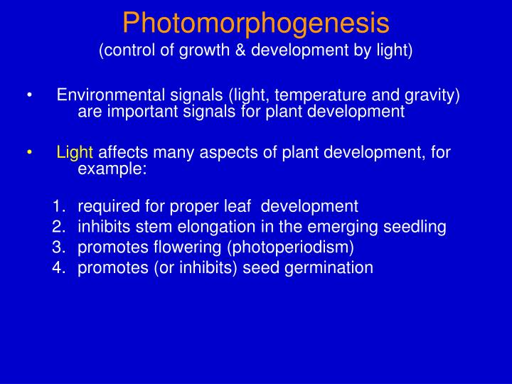 Photomorphogenesis control of growth development by light