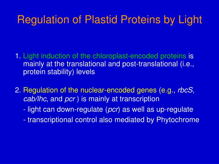 Regulation of Plastid Proteins by Light