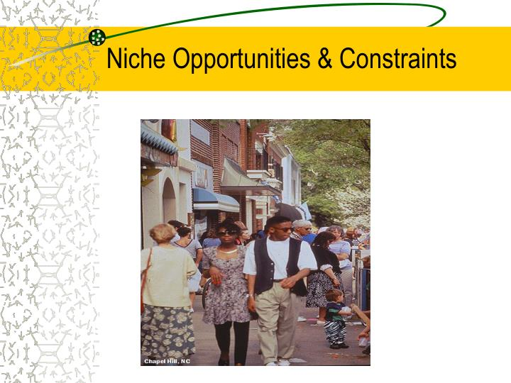 Niche Opportunities & Constraints