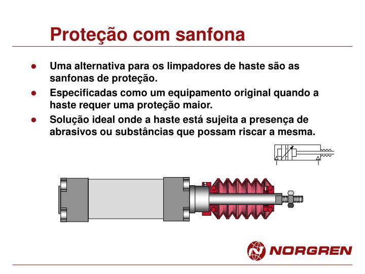 Proteção com sanfona