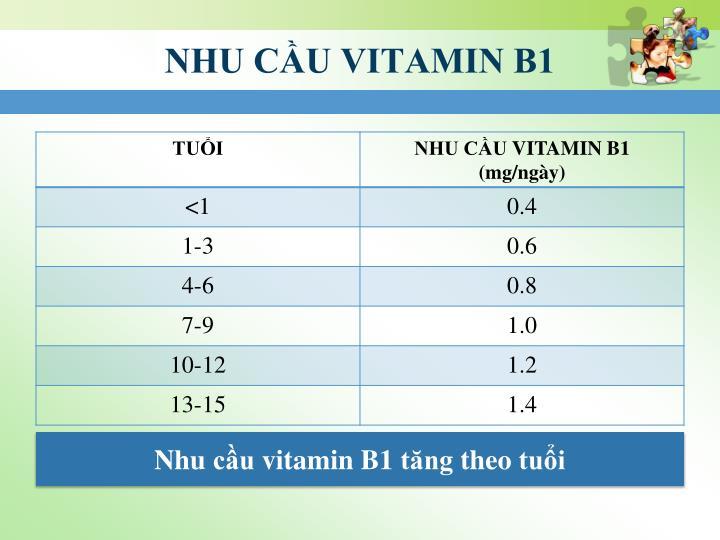 NHU CẦU VITAMIN B1