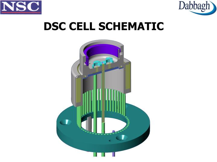 DSC CELL SCHEMATIC