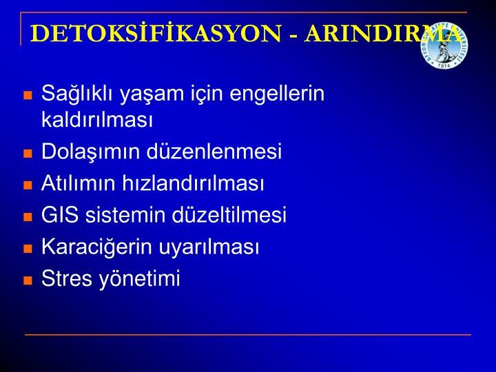 DETOKSİFİKASYON - ARINDIRMA