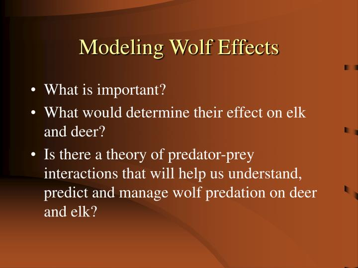 Modeling Wolf Effects