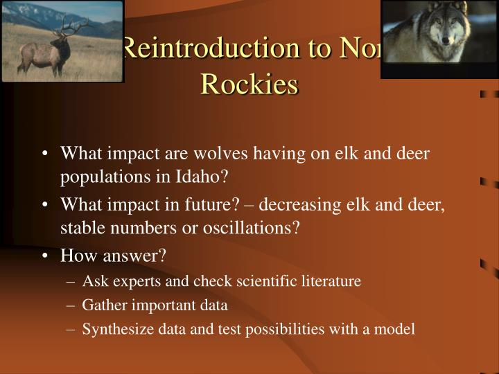 Wolf Reintroduction to Northern Rockies