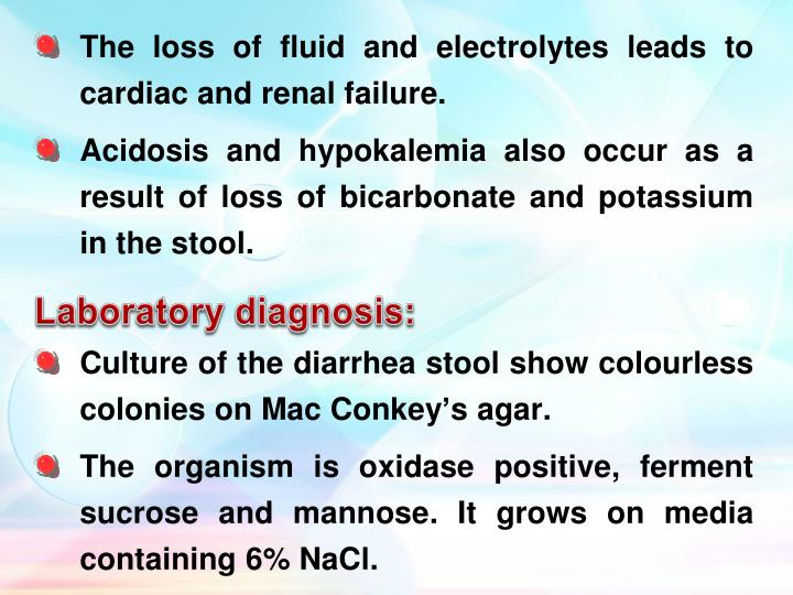 The loss of fluid and electrolytes leads to cardiac and renal failure.