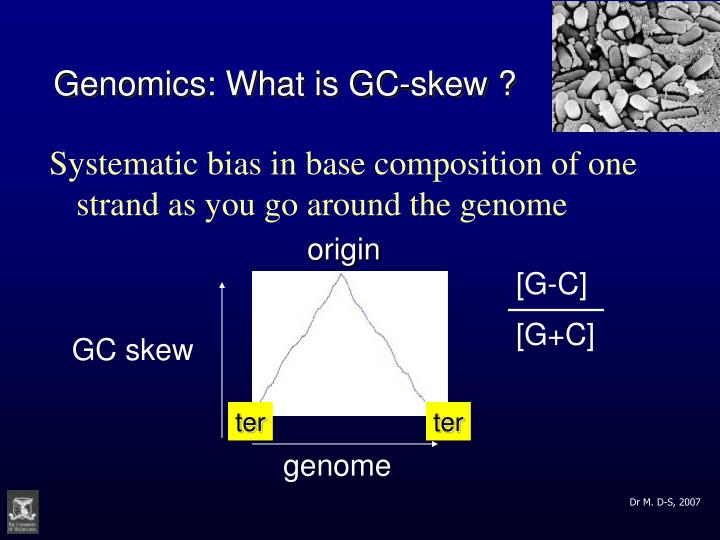Genomics: What is GC-skew ?