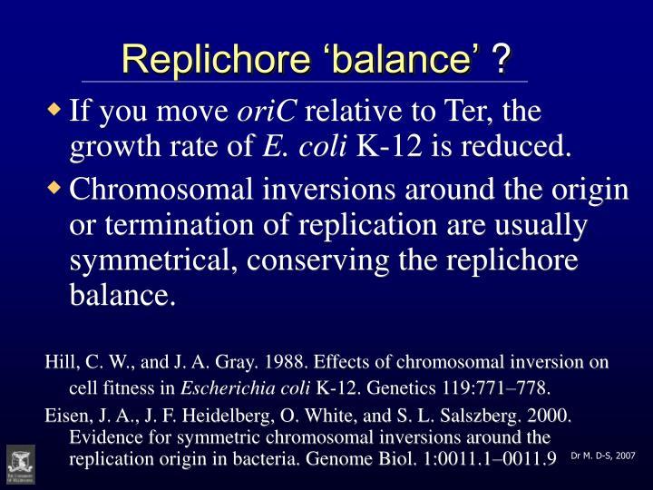 Replichore 'balance'
