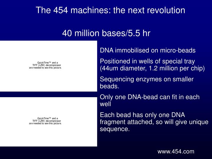 The 454 machines: the next revolution
