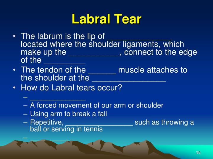 Labral