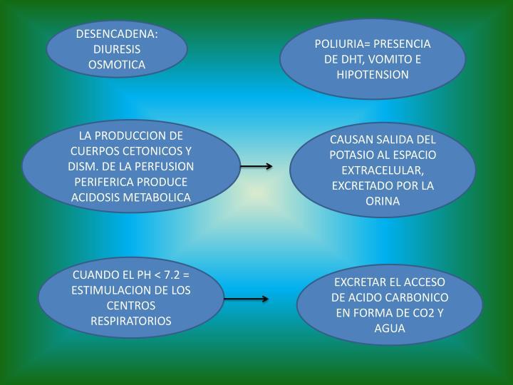POLIURIA= PRESENCIA DE DHT, VOMITO E HIPOTENSION
