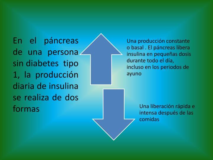En el páncreas de una persona sin diabetes  tipo 1, la producción diaria de insulina se realiza de dos formas