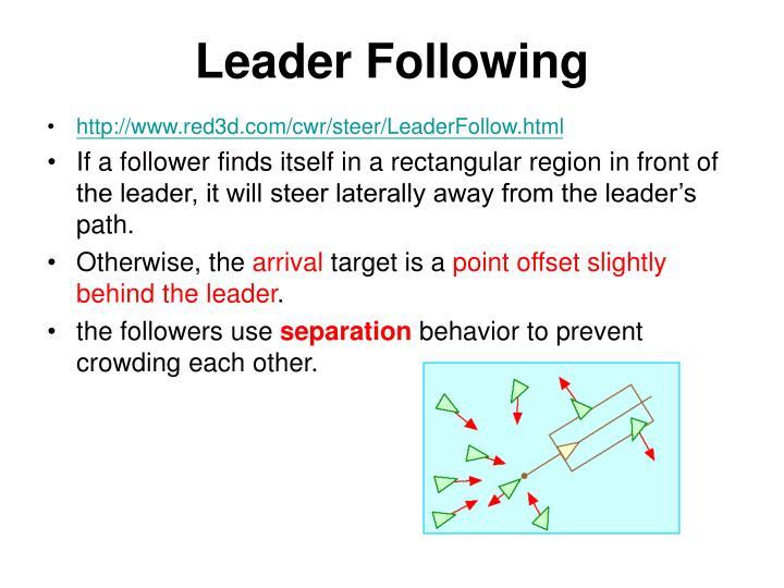 Leader Following