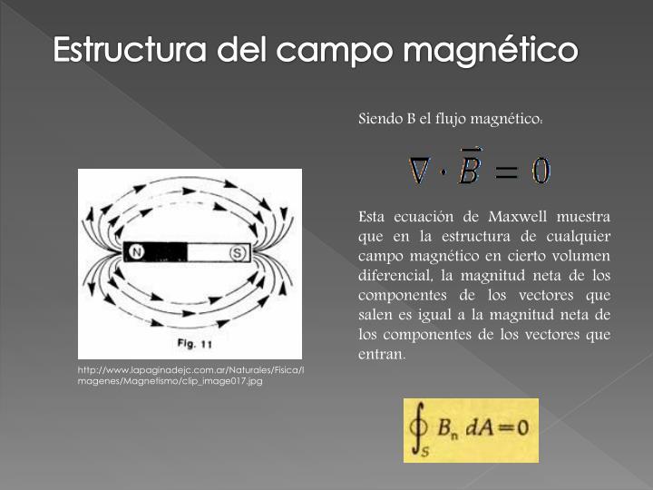 Estructura del campo magnético