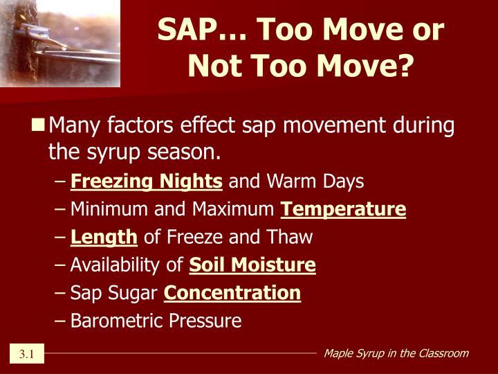 SAP… Too Move or