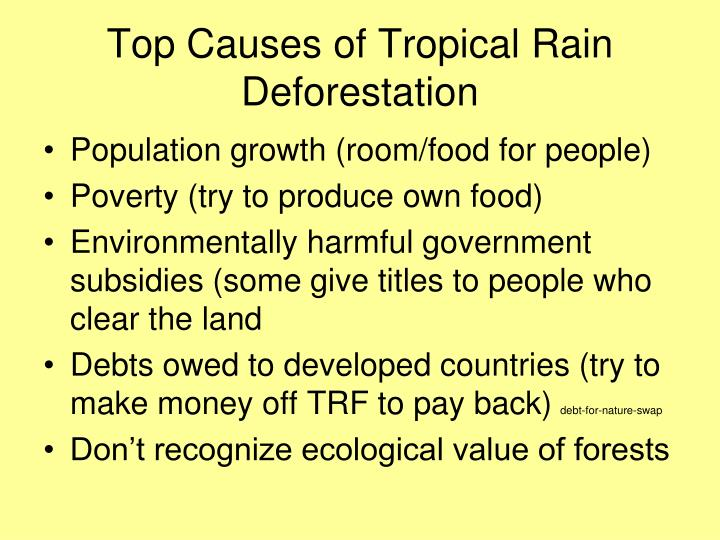 Top Causes of Tropical Rain Deforestation