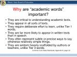 why are academic words important