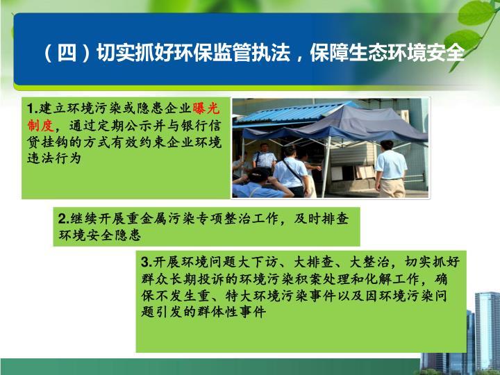 (四)切实抓好环保监管执法,保障生态环境安全