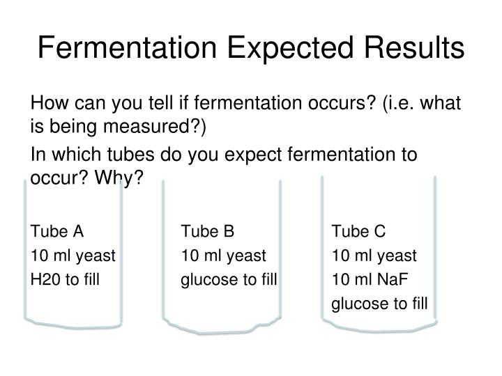 Fermentation Expected Results