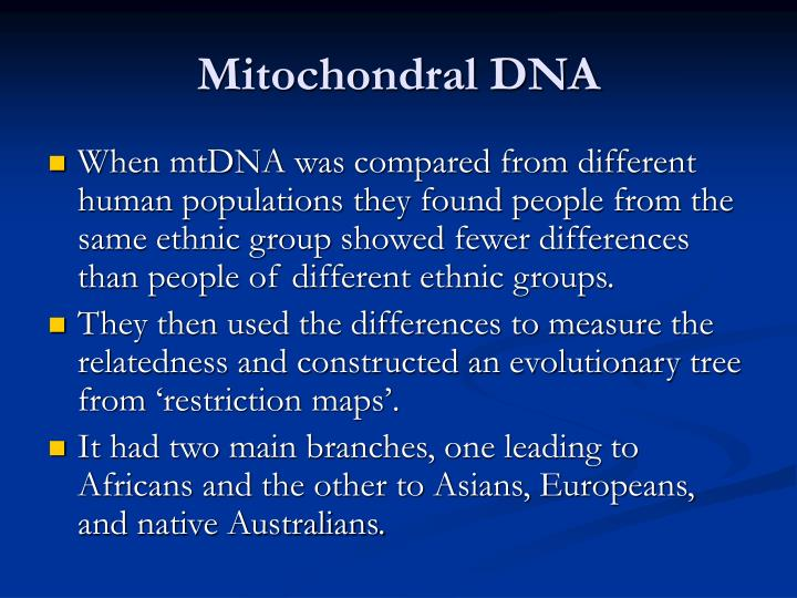 Mitochondral DNA