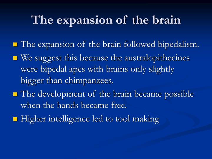 The expansion of the brain