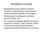 disciplinarni pristup
