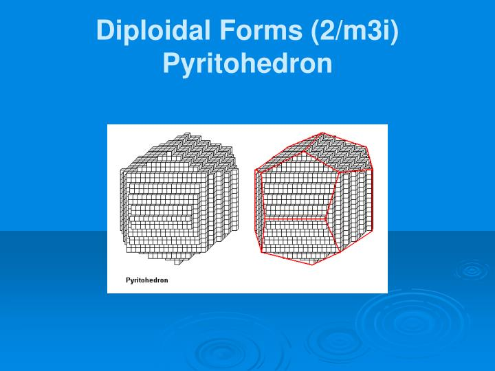 Diploidal Forms (2/m3i)