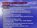juang saora tribe of orrisa